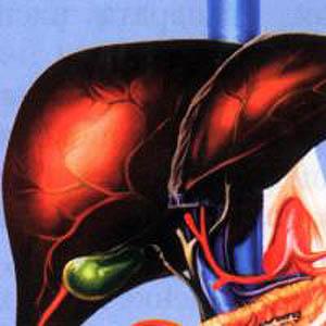 Фото №1 - В Азии распространяется гепатит