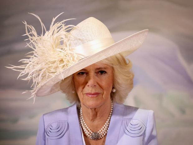 Фото №1 - «Напряжение и гнев»: что не так с новым официальным портретом герцогини Камиллы