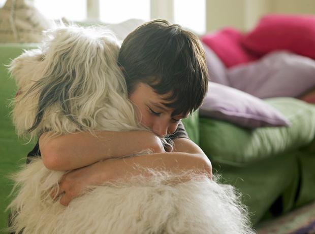 Фото №4 - Дети и домашние животные: чем опасна их дружба?