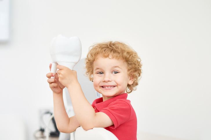 Фото №1 - Почему нельзя выбрасывать молочные зубы ребенка