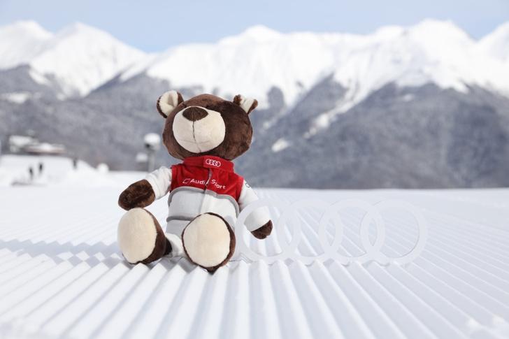 Фото №4 - Финал зимнего турнира Audi quattro Winter Cup 2020 прошел в Сочи