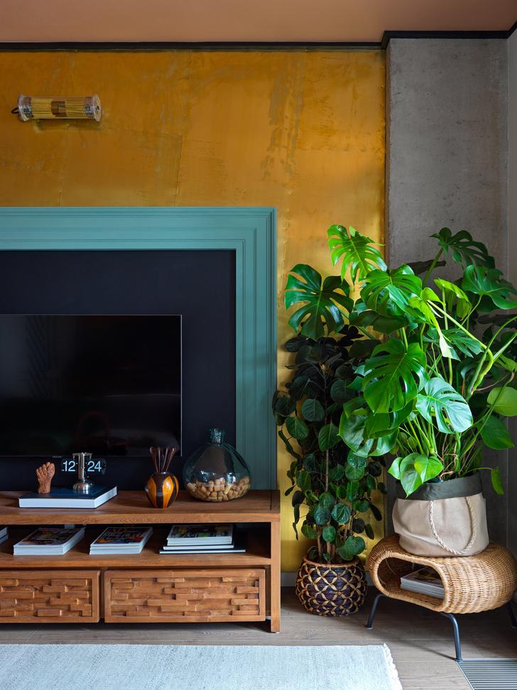 Фото №2 - Как освежить комнатные растения: 6 эффективных советов по уходу