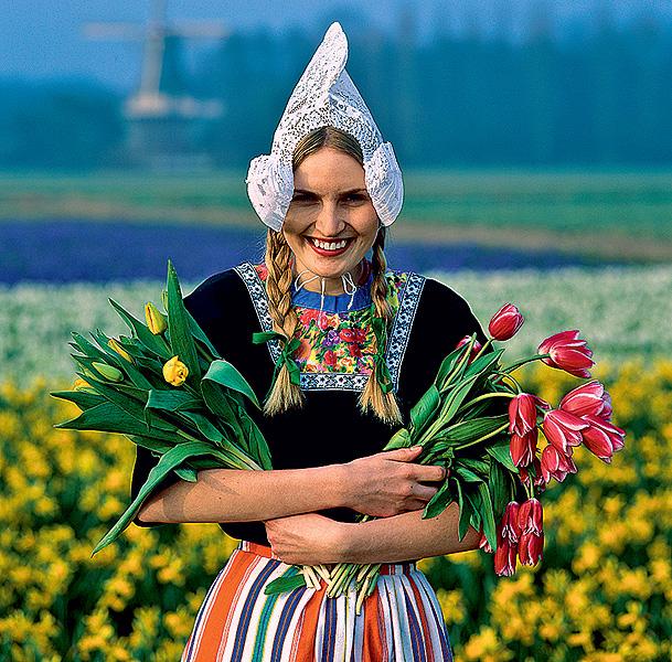 Фото №9 - Как тюльпаны стали национальным достоянием Нидерландов
