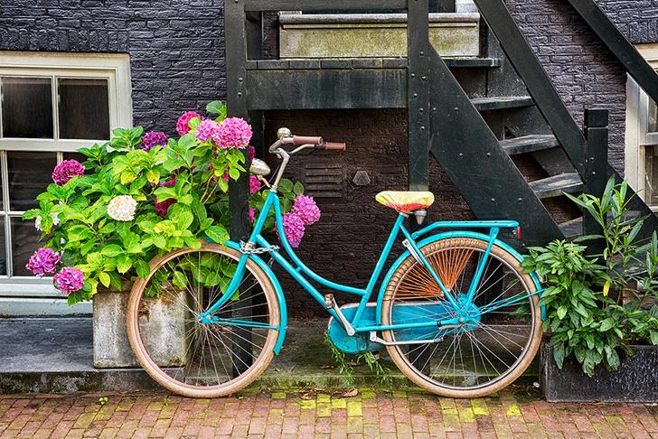 Фото №6 - Личный опыт: «Я пробовала встречаться с голландецм, и это была самая плохая идея в моей жизни»