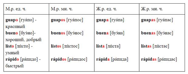 Фото №2 - Зажигательный испанский: урок 6— изучаем прилагательные