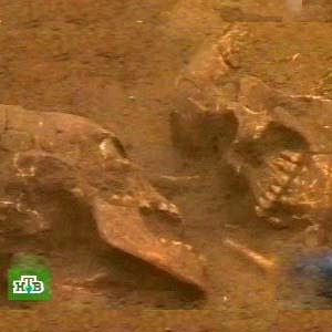 Фото №1 - Археологи раскопали Ромео и Джульетту