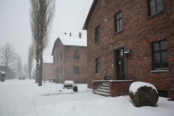 Фото №3 - Общежитие смерти на польской земле