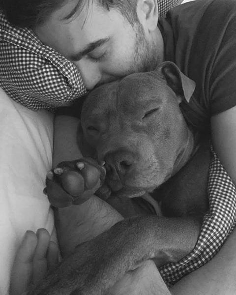 Фото №2 - Женщина ненавидела соседского пса, а потом он ее спас