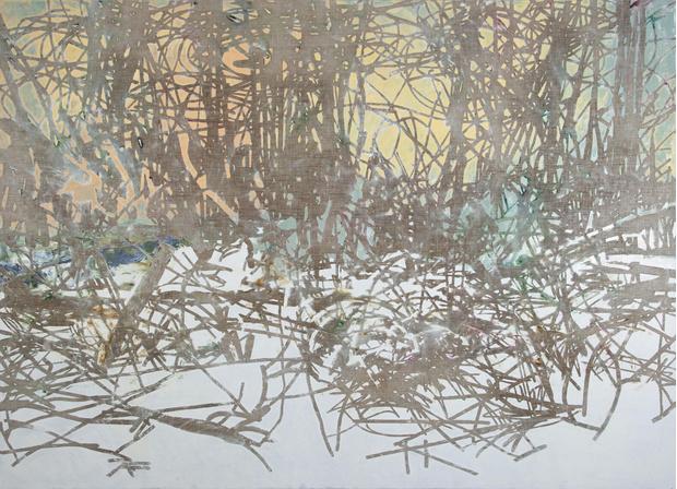 Фото №2 - Выставка Виталия Пушницкого в галерее Марины Гисич