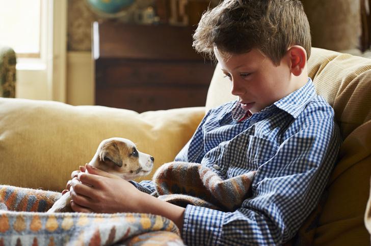 Фото №1 - Собаки защищают от шизофрении