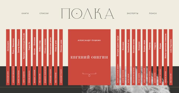 Фото №1 - Начал работу сайт образовательного проекта «Полка»