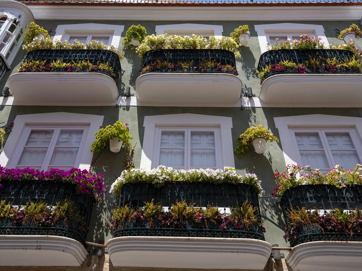 Фото №5 - Домашний оазис: как превратить балкон в комнату отдыха