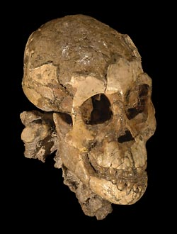 Фото №3 - Люди с прошлым, или скелеты в песке