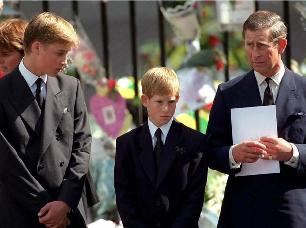 Фото №3 - Неисполненная клятва: что принц Уильям пообещал Диане за год до ее гибели
