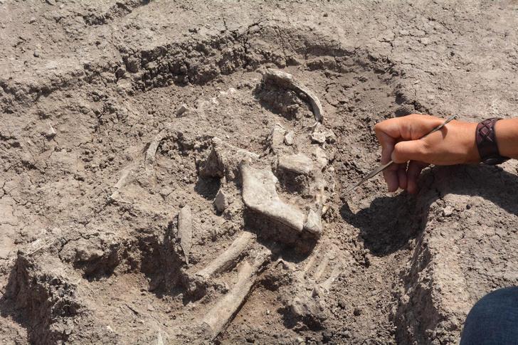 Фото №1 - В Турции обнаружили следы неизвестной цивилизации