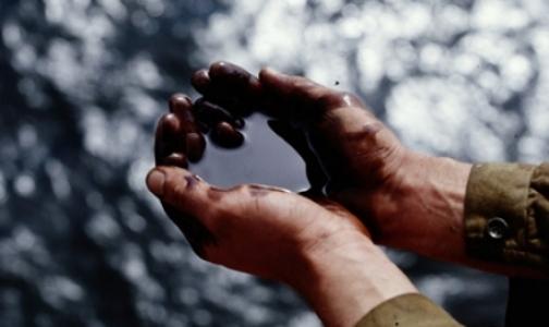Фото №1 - «Водные дворники» собрали 300 кг нефти в устье Малой Невы