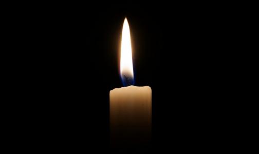 Фото №1 - В комздраве рассказали о 54 умерших от коронавируса петербуржцах