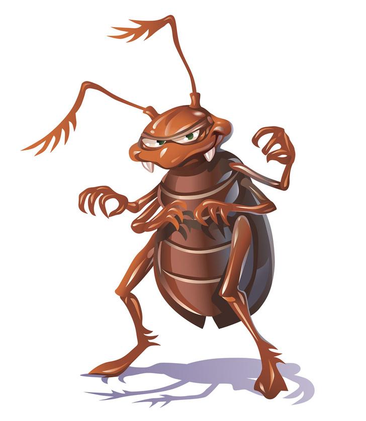 Фото №1 - Челюсти тараканов оказались сильнее человеческих