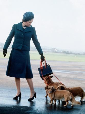 Фото №2 - Необычное занятие, которым Королева скрашивает скуку за городом
