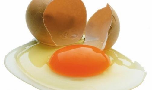Фото №1 - Яйца похудели