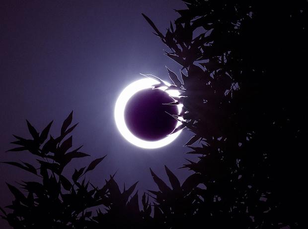 Фото №2 - Как солнечные и лунные затмения влияют на разные знаки зодиака
