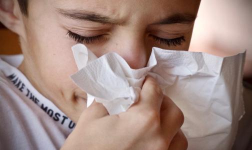 """Фото №1 - Главврач Боткинской больницы: При коронавирусе бывает и насморк, и """"мокрый"""" кашель"""