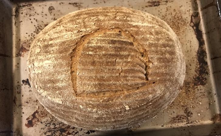 Фото №1 - На основе 4500-летних дрожжей испекли хлеб
