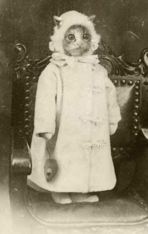 Фото №2 - Шедевры сурового фотошопа в семейных альбомах наших прадедов
