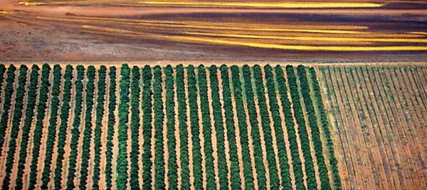 Фото №2 - Австралия: взгляд сверху