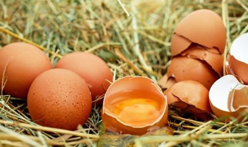 Фото №1 - Накануне Пасхи эксперты не нашли на прилавках высококачественных яиц