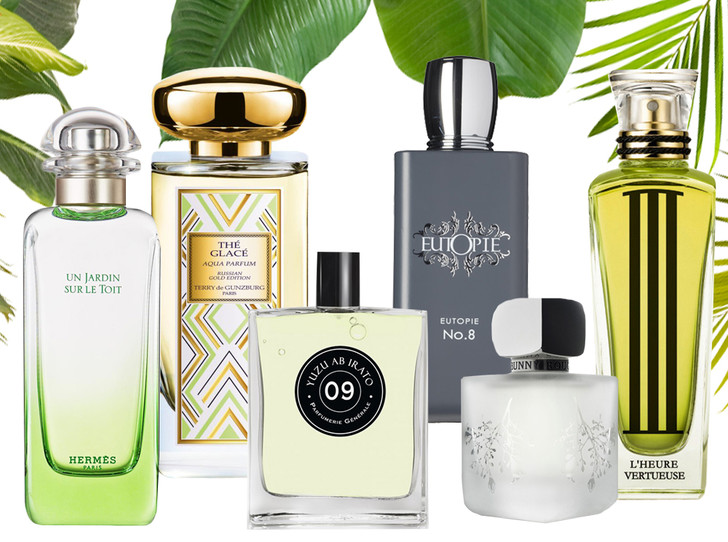 Фото №1 - 6 «зеленых» ароматов, которые выделят вас из толпы