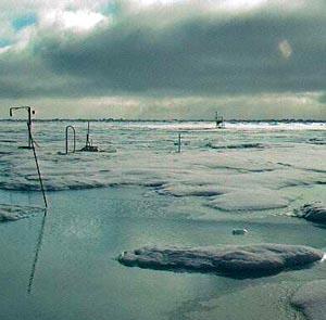 Фото №1 - Километровый заплыв при минусовой температуре воды