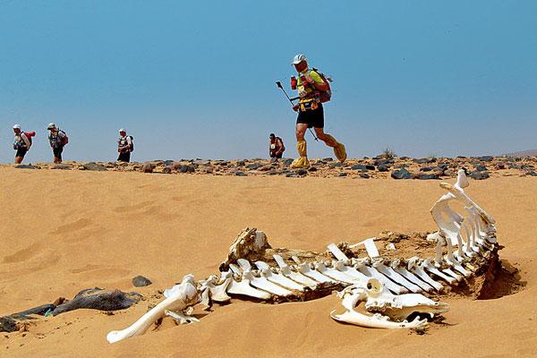 Фото №9 - След на песке