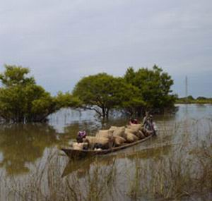 Фото №1 - Африке грозит голод из-за наводнений
