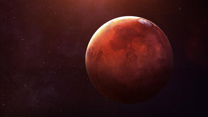 Фото №1 - Илон Маск представил план колонизации Марса