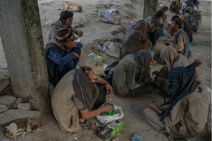 Фото №2 - «Не важно, если кто-то из них умрет»: как талибы искореняют наркобизнес в Афганистане