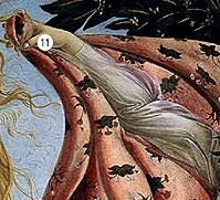 Фото №11 - 14 символов, зашифрованных в «Венере» Боттичелли