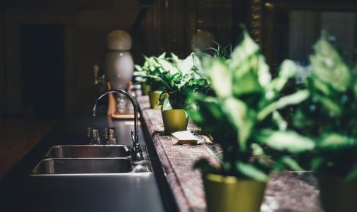 Фото №1 - Микробиолог назвал самое грязное место в квартире