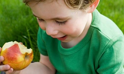 Фото №1 - На выбор еды влияет реклама и... родители