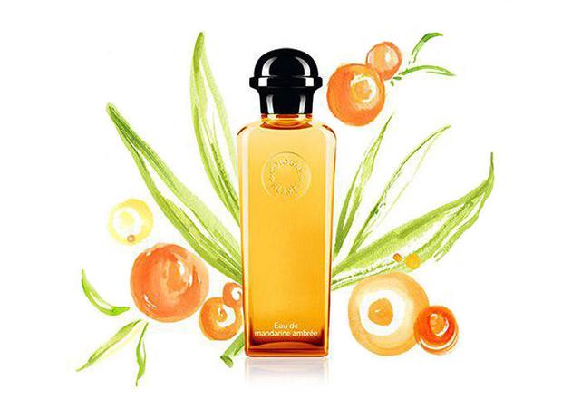 Фото №2 - Заводной мандарин: небанальные ароматы с цитрусовыми нотами