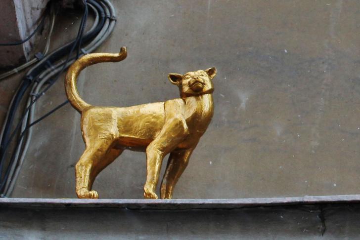Фото №3 - Короли улиц: 9 памятников кошкам