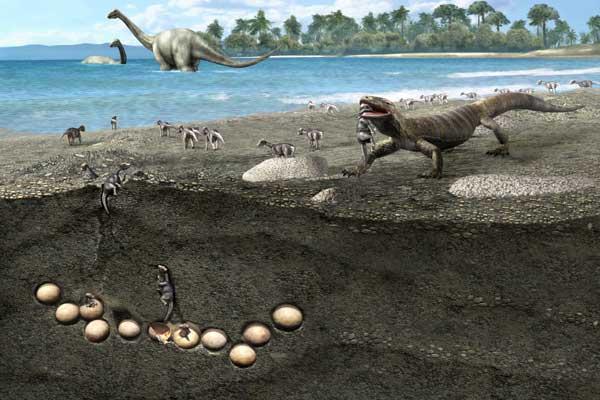Фото №3 - По гнездовьям динозавров