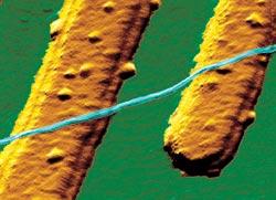 Фото №6 - Нанотехнологии, или Атомы вместо гвоздей
