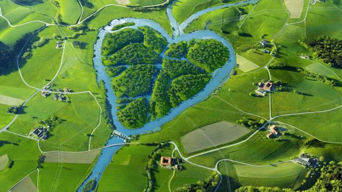 Сердце, США