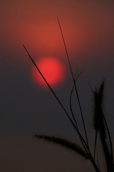 Фото №9 - Как солнце стало зрячим