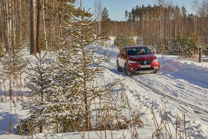 Фото №4 - Зимние игры с Renault Arkana