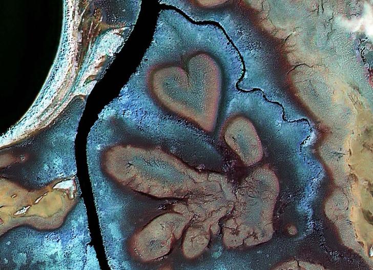 Фото №1 - Сердце Вох