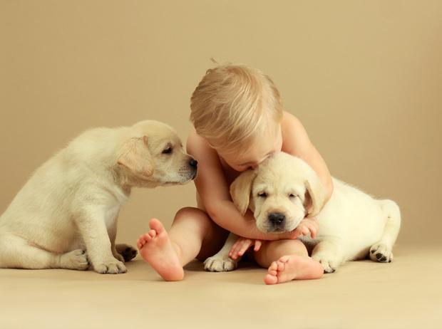 Фото №1 - Дети и домашние животные: чем опасна их дружба?