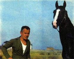 Фото №3 - Нисийские кони