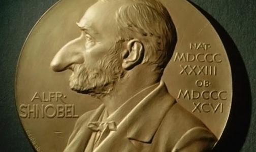 Фото №1 - Шнобелевская премия-2017: почему у стариков растут уши, а некоторые не любят сыр